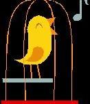caged singing bird