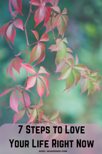 7 Steps to Love Your Life Right Now