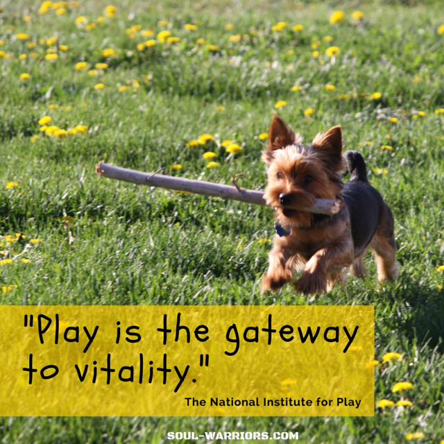 Play is the gateway to vitality.