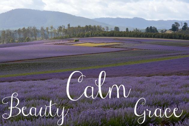 Calm Beauty Grace Soul Land