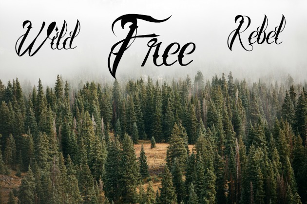 Wild Free Rebel Soul Land